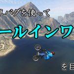 【超ド級】自転車バグでホールインワン!?【ありえないジャンプ】